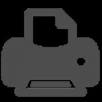 Agile Issue Printer