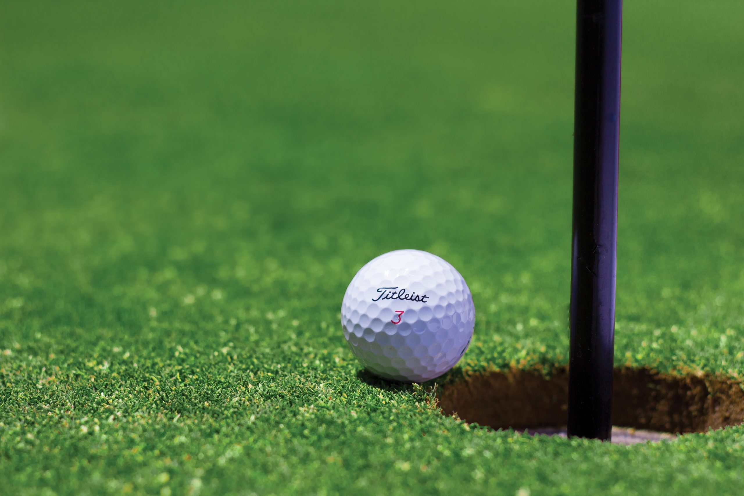 Top Golf Event - Blended Perspectives 1